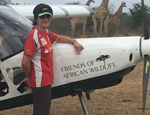 News aus dem Southern African Wildlife College